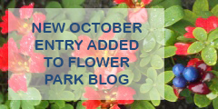 Flower park blog - new entries added