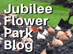 Jubilee Flowerpark Blog