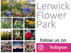 Flower Park Instagram