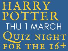 harry potter 4 the 16plus